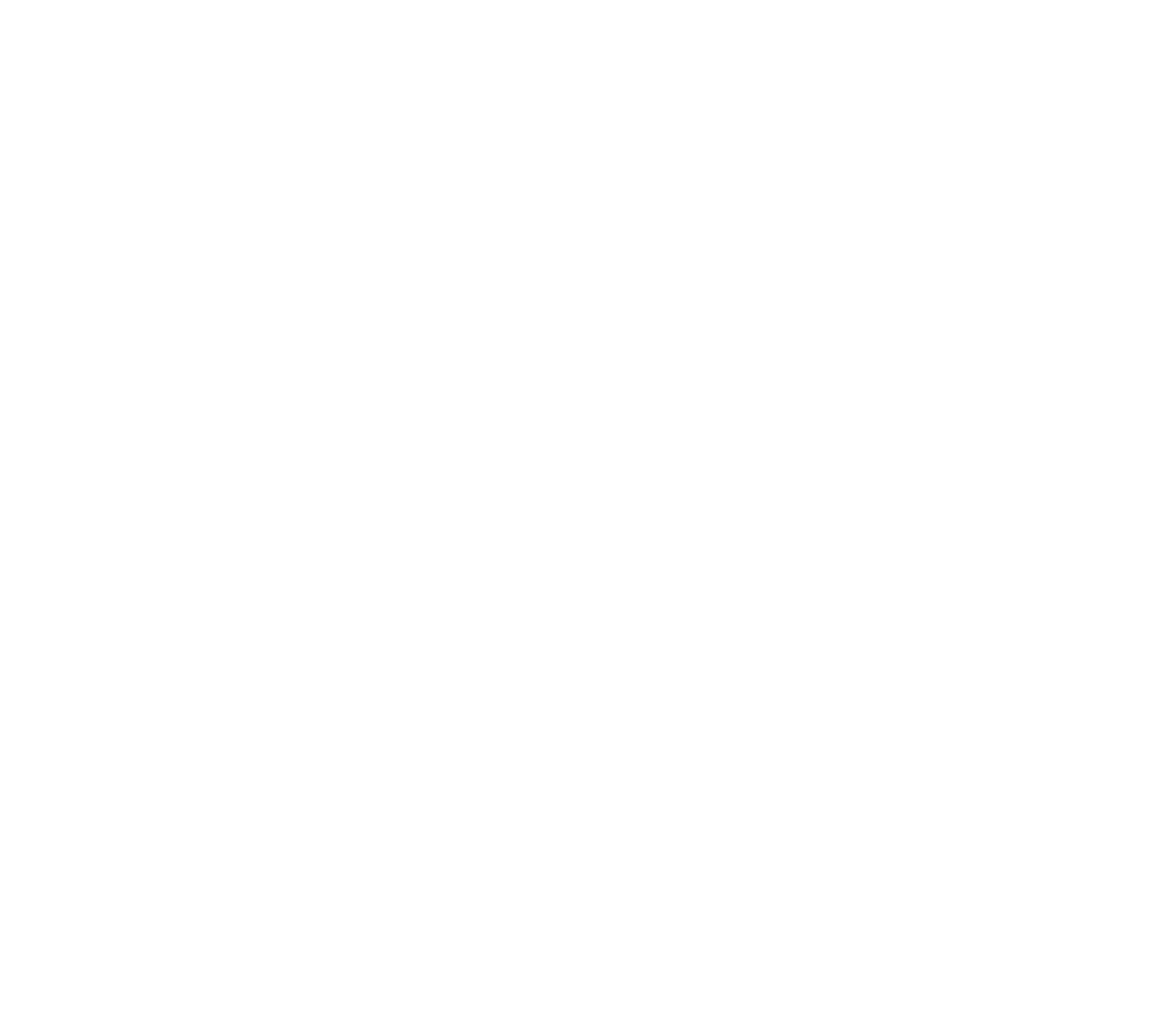 Text reads: 'Fixed-rate paid search campaigns; Get found on the first page of the largest search engines in the world by traffic that matters. Yes, of course this includes Google. We're a Google Premier Partner.'